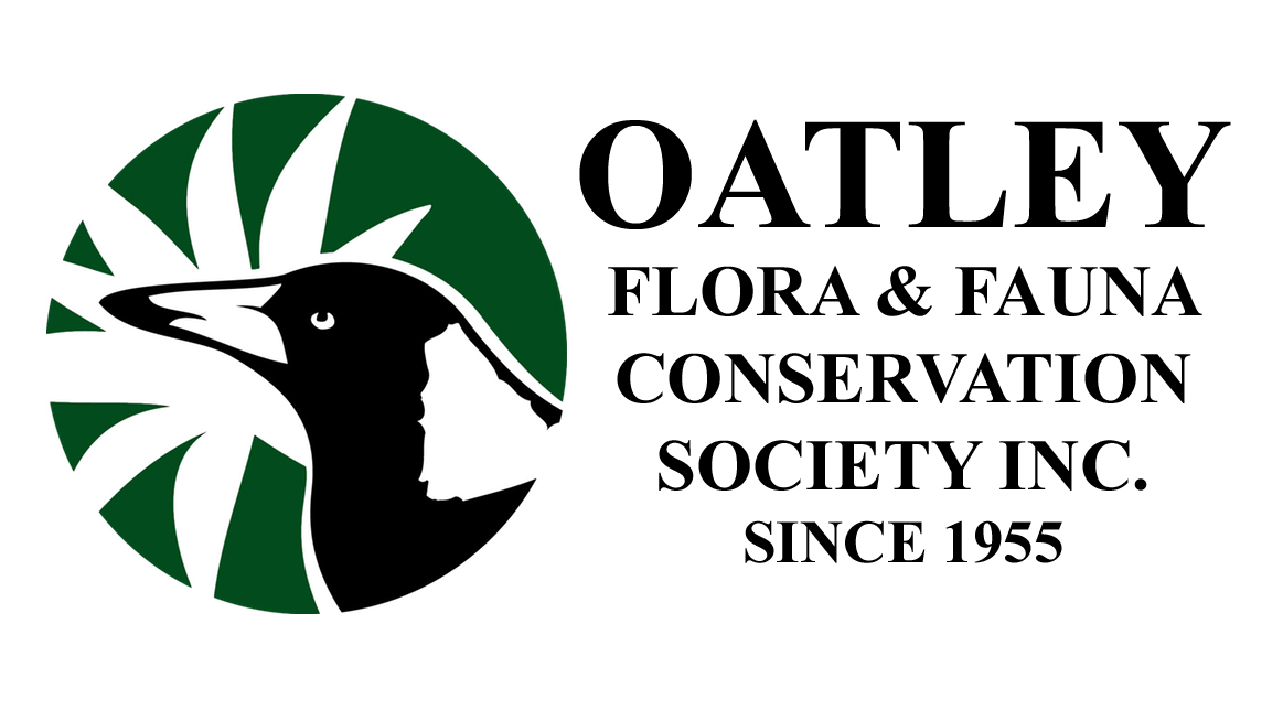 Oatley Flora & Fauna Conservation Society