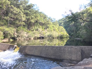 Walk report for Unexpected animal habitats and heritage landscapes -south western Sydney